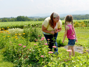 Growing flowers at Harmony Harvest Farm